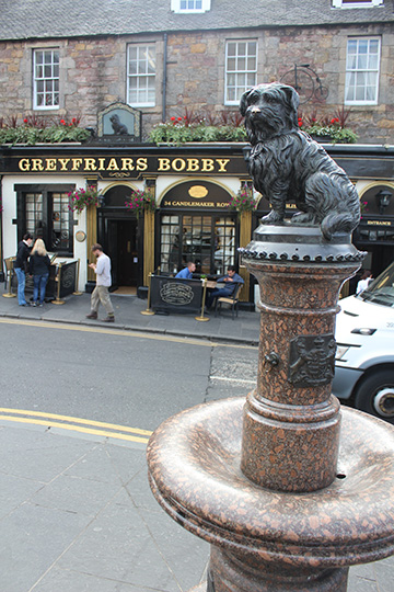 The statue of the little dog that won the hearts and souls of Edinburgh, Scotland.